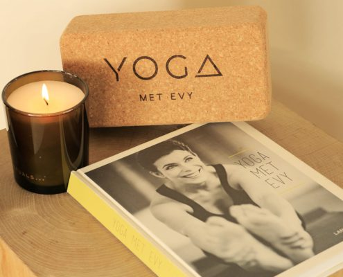 Barney the Yoga met Evy book